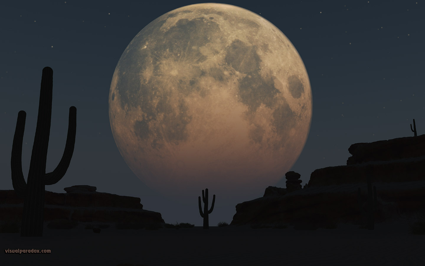 lunar, moon, planet, desert, sand, cactus, night, full moon, 3d, wallpaper, widescreen
