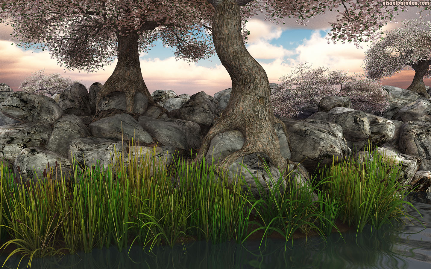 trees, blossoms, flowers, reeds, lake, pond, river, rocks, roots, knarled, tree, root, 3d, wallpaper, widescreen