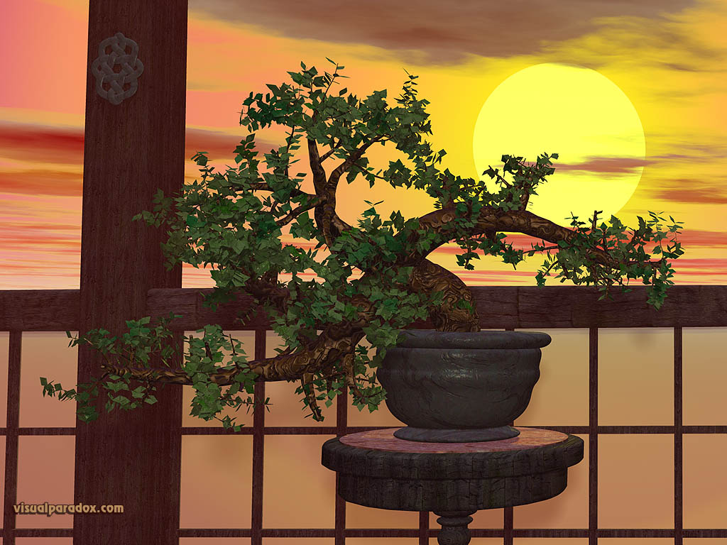 tree, sunset, japanese, trees, japan, bonzai, 3d, wallpaper