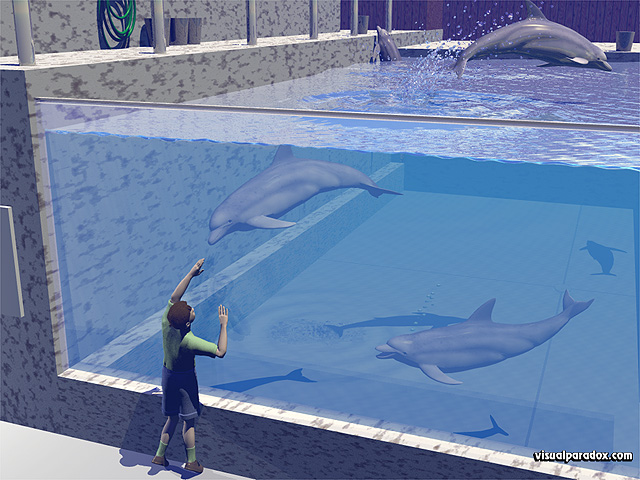 Free 3D Wallpaper 'Dolphin Park' 640x400
