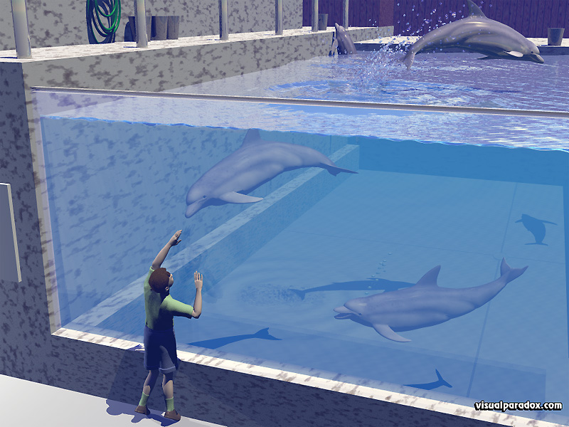 sea, world, tank, aquatic, porpoises, tricks, jumping, splash, dolphins, animal, animals, 3d, wallpaper