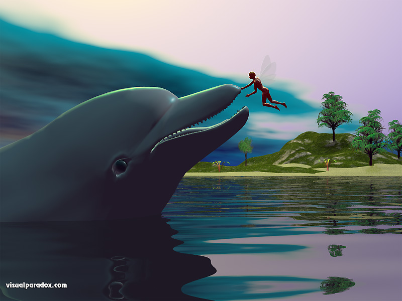dolphin, fairy, pet, water, ocean greeting, hello, love, porpoise, dolphins, 3d, wallpaper