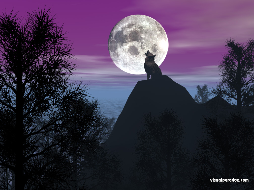 timber, wolf, howling, baying, moon, lunar, purple, pines, forest, coyote, wolves, animal, animals, 3d, wallpaper