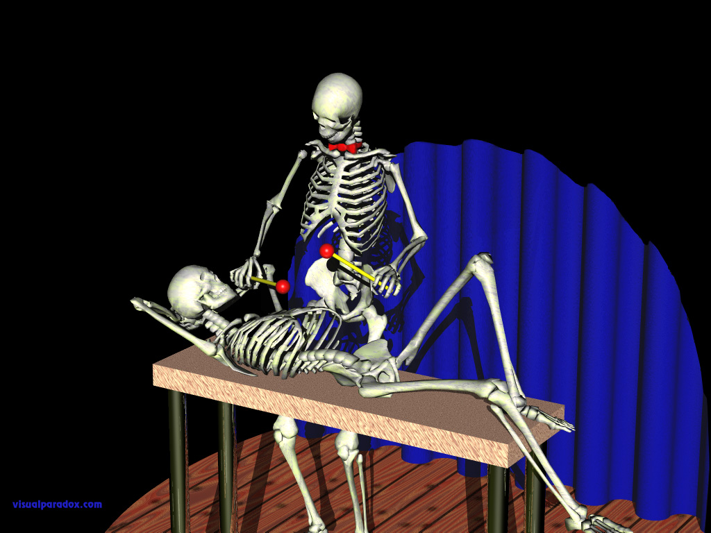 skeletons, xylophone, performing, play, instrument, stage, skeleton, bones, bone, stage, 3d, wallpaper