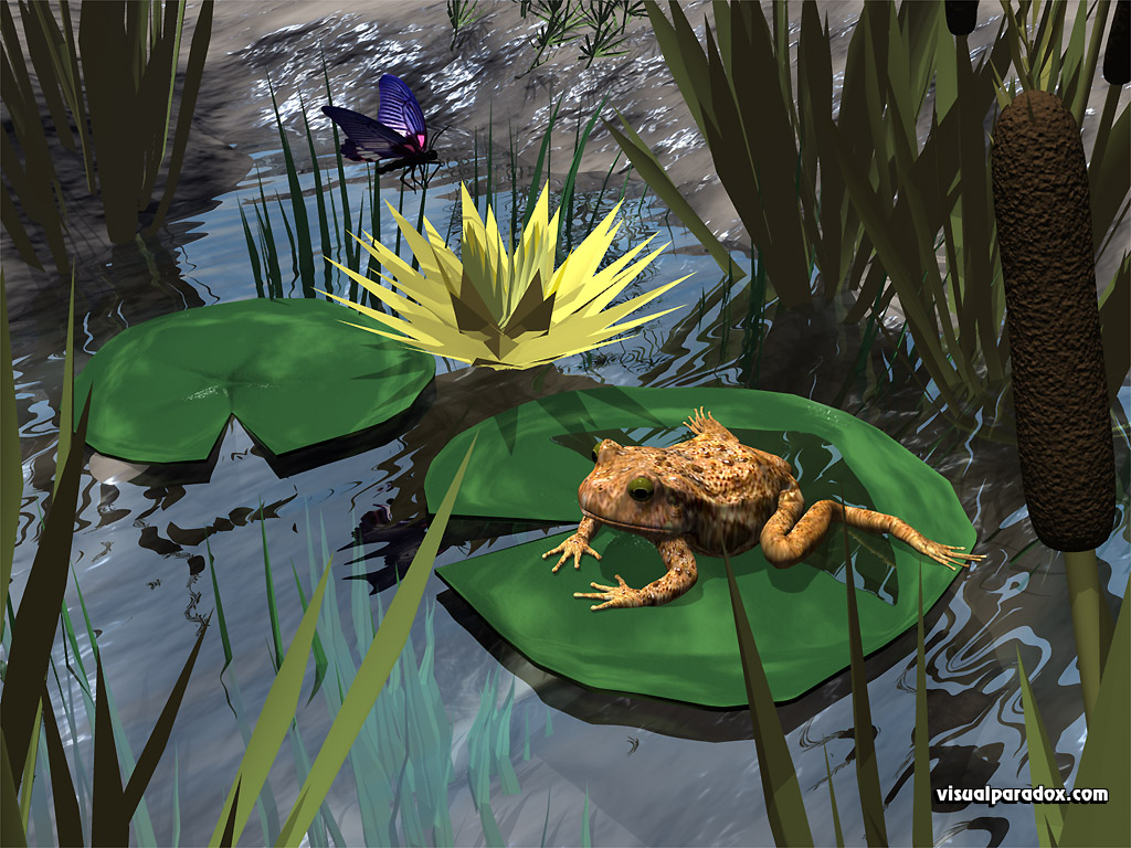 frog, toad, Lilly pad, butterfly, reeds, water, pond, lake, frogs, amphibian, animal, animals, 3d, wallpaper