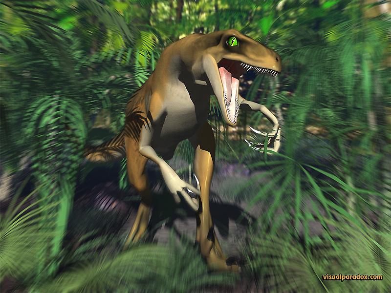 raptor800.jpg