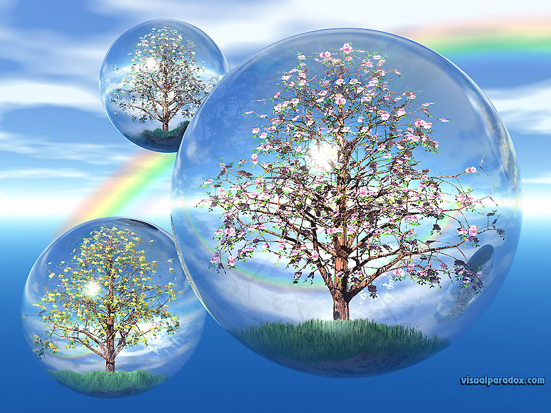 crystals, trees, sky, globes, float, bubbles, balls, fly, terrarium, flowers, blossoms, crystal, globe, blossom, flower, bud, 3d, wallpaper