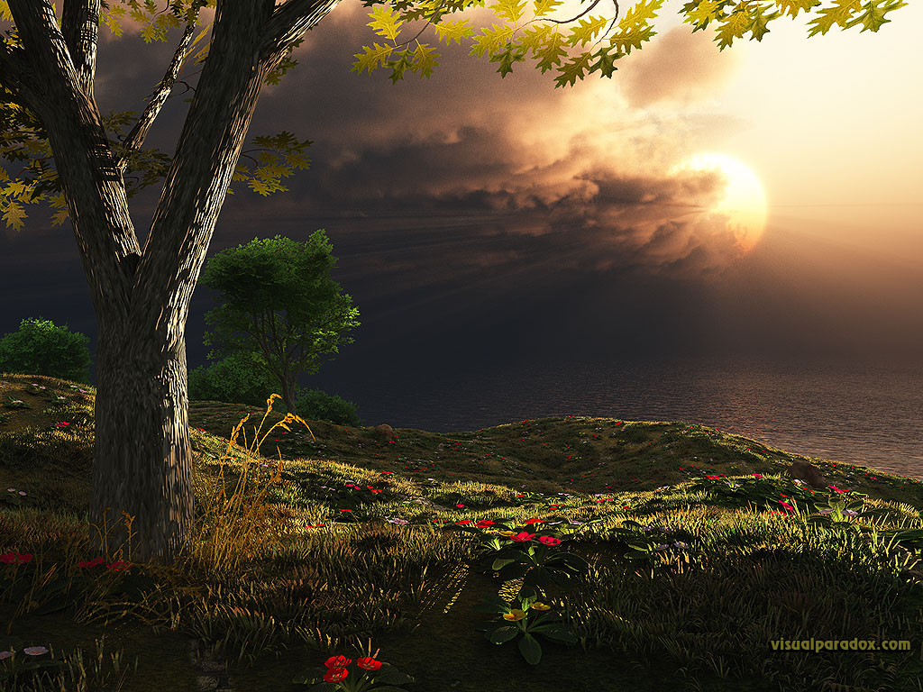 storms, clouds, sunrise, sunset, rays, light, tree, flowers, sun, 3d, wallpaper