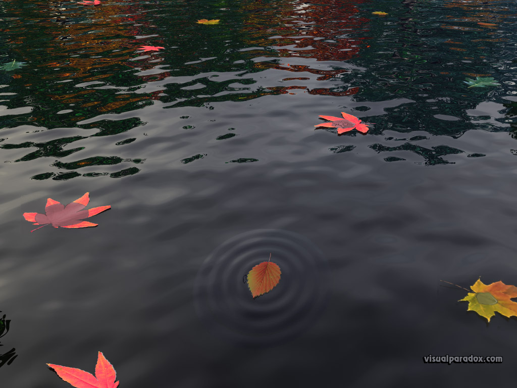 leaves, leaf, fall, colors, calm, water, ripples, meaning, autumn, nature, 3d, wallpaper