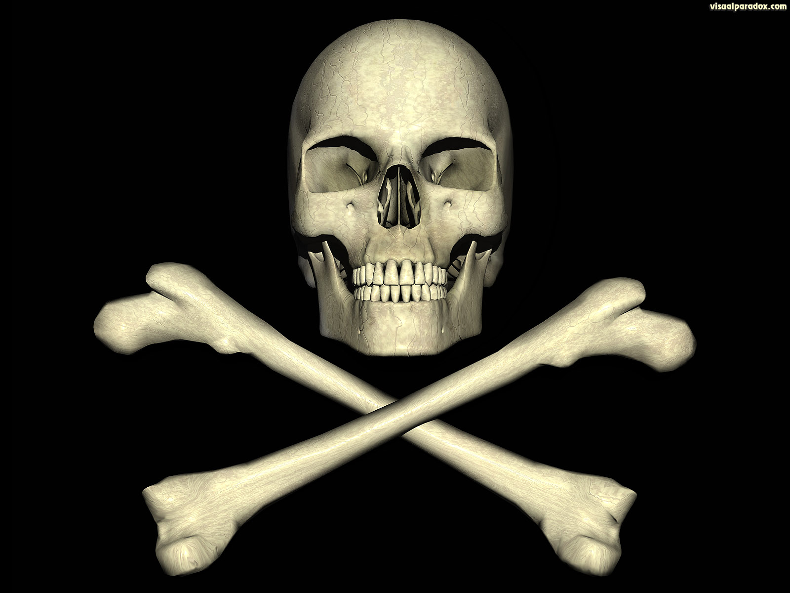jolly, roger, skull, pirate, bones, poison, deadly, danger, pirates, dangerous, 3d, wallpaper