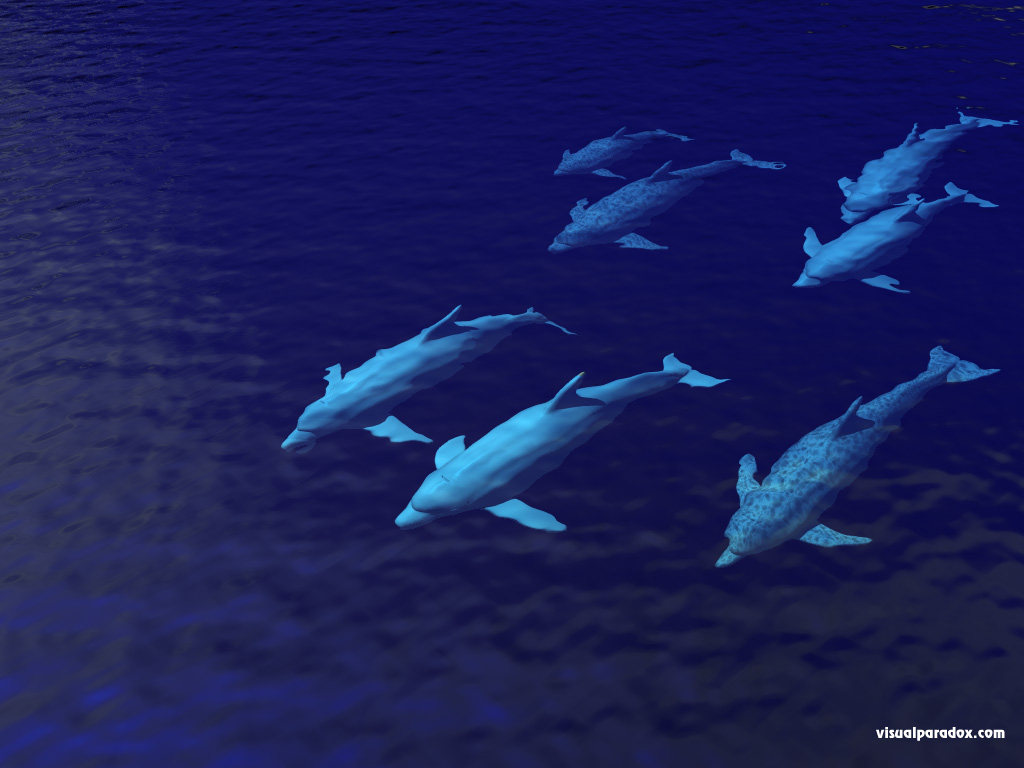 porpoises, swimming, underwater, ocean, sea, group, family, dolphins, animal, animals, 3d, wallpaper
