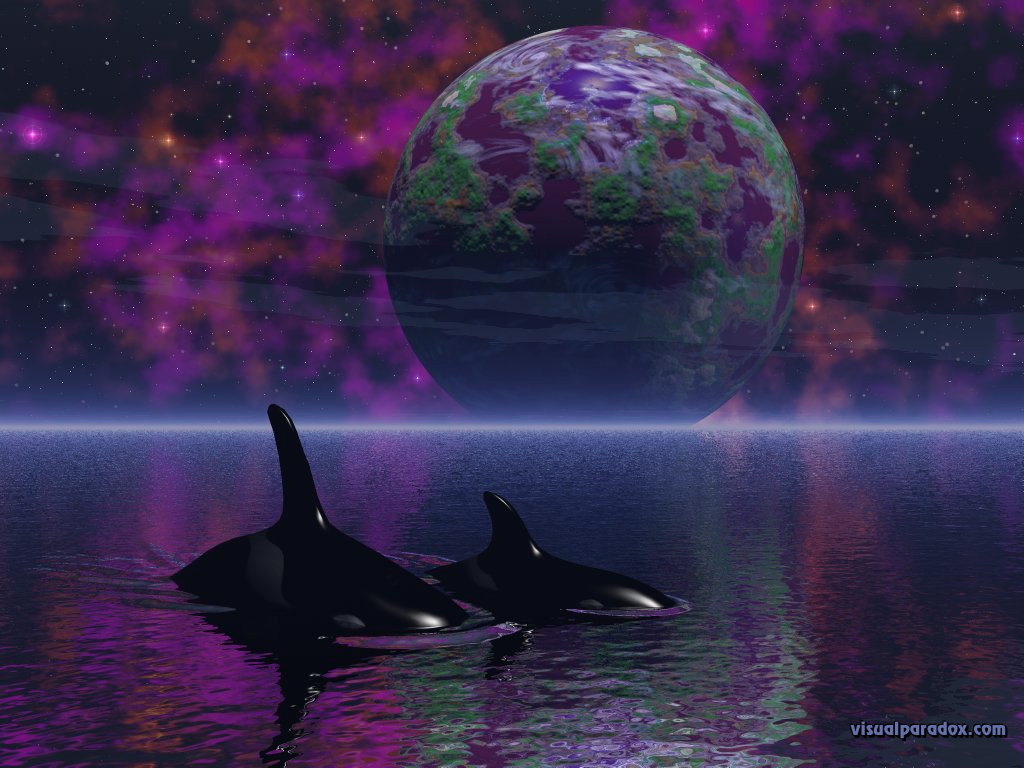 killer whales, planet, space, ocean, water, spiritual, stars, space, orca, whales, planets, 3d, wallpaper