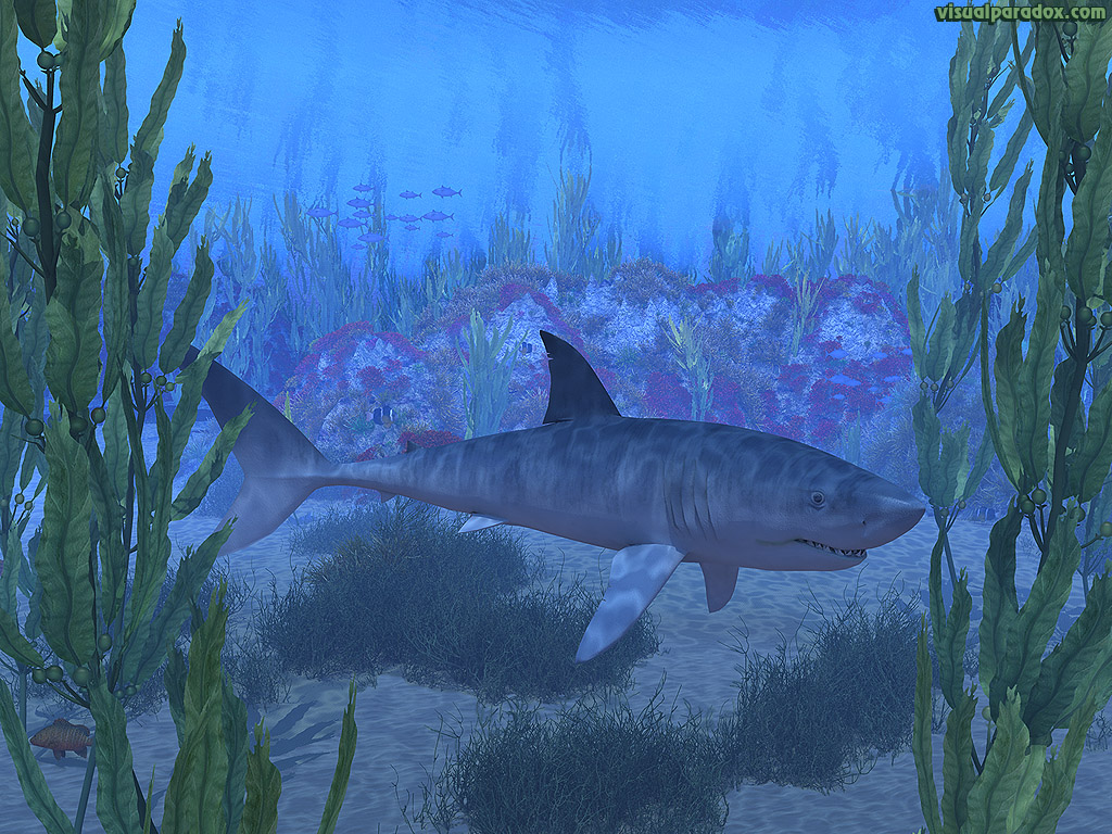 shark, white, blue, great, swim, jaws, kelp, sea, ocean, water, underwater, 3d, wallpaper