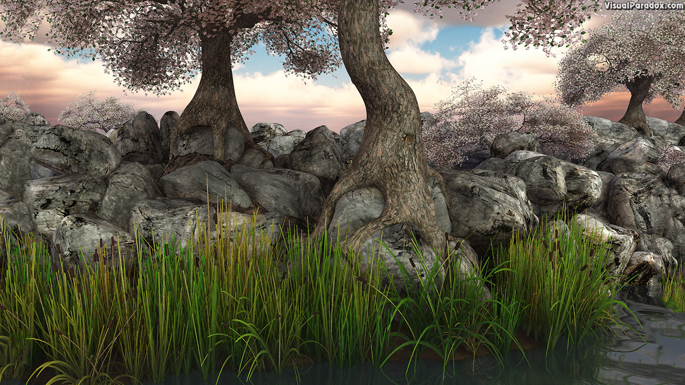 trees, blossoms, flowers, reeds, lake, pond, river, rocks, roots, knarled, tree, root, 3d, wallpaper