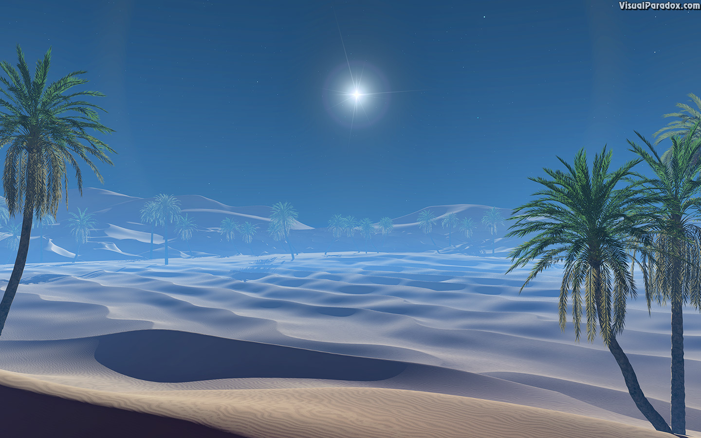 arabian, beautiful, bethlehem, bible, blue, bright, burst, christmas, date, desert, dry, dune, dunes, gift, grass, green, hill, holiday, holy, jesus, landscape, light, middle, mountains, nature, night, oasis, outdoor, palm, park, pregnant, sahara, sand, scenery, season, sign, sky, star, stars, story, sunset, supernova, symbol, three, travel, tree, trees, wise, xmas, 3d, wallpaper