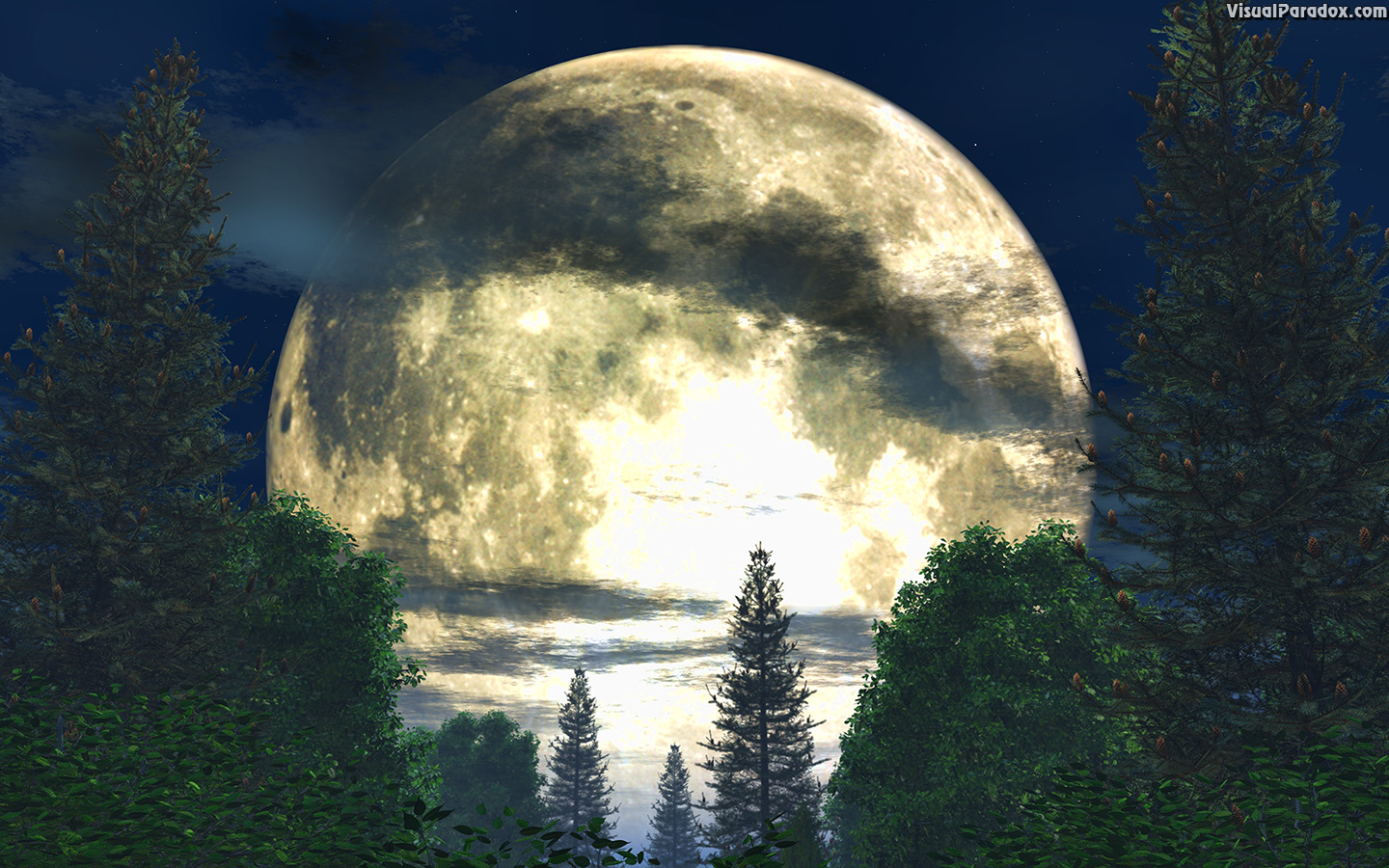 atmospheric, background, backlit, beautiful, beauty, blue, branch, bright, clouds, country, dark, dramatic, forest, fullmoon, glowing, illustration, landscape, light, luna, lunar, mist, moon, moonlight, moonlit, nature, night, outdoors, pine, round, scene, serenity, shadow, silent, sky, stars, tree, view, white, wood, woods, 3d, wallpaper