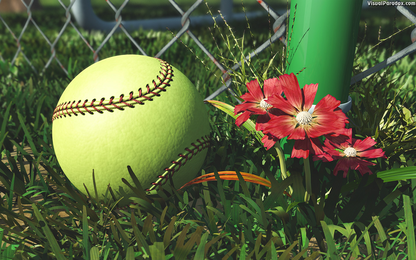 america, american, athletic, athletics, ball, ballpark, barrier, baseball, boundary, chain, closeup, color, detail, equipment, fence, field, flower, foul, game, gear, grass, green, infield, laces, lawn, league, leather, link, little, lost, metal, outdoor, outfield, pink, pitch, practice, recreation, red, season, single, soft, softball, sport, sports, spring, stitches, stitching, summer, team, weeds, wire, yellow, 3d, wallpaper
