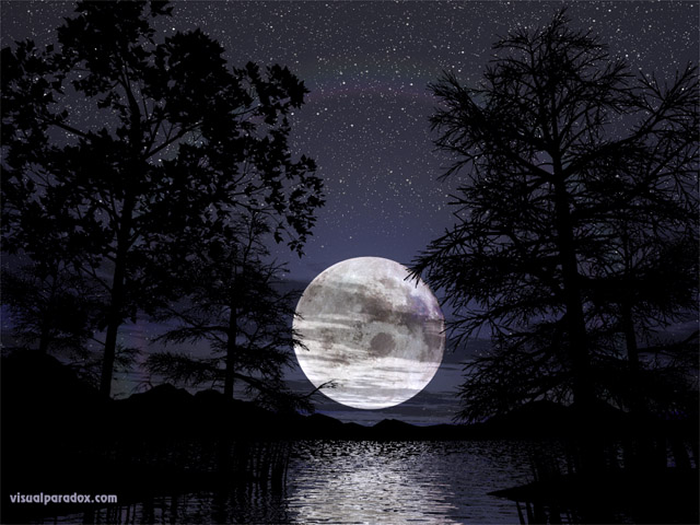 lunar, trees, lake, water, reeds, silhouette, stars, romantic, peaceful, tranquil, reflections, full, free, 3d, wallpaper