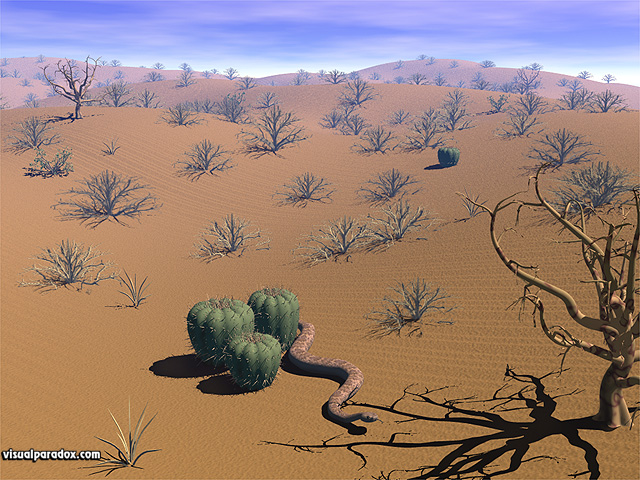 rattlesnake, brush, bush, hot, sand, dunes, dry, barren, animal, animals, free, 3d, wallpaper
