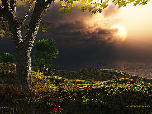 storms, clouds, sunrise, sunset, rays, light, tree, flowers, sun, free, 3d, wallpaper