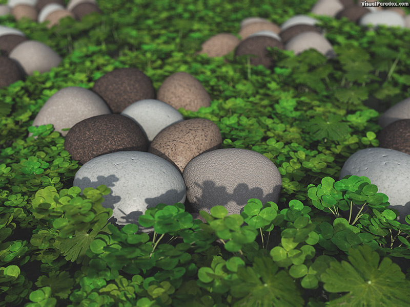 art, background, beautiful, beauty, care, clover, concept, day, fresh, garden, grass, green, health, healthy, holiday, ireland, irish, leaf, life, luck, natural, nature, patrick's, patricks, plant, rock, saint, season, shamrock, spring, st., stone, stones, summer, white, 3d, wallpaper