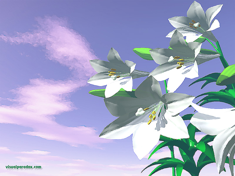 watercolor, easter, white, flowers, plant, spring, flower, lilly, lily, lillies, 3d, wallpaper