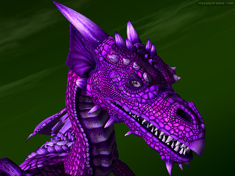 dragon, wyrm, mythical, monster, soar, closeup, detail, violet, purple, dragons, 3d, wallpaper