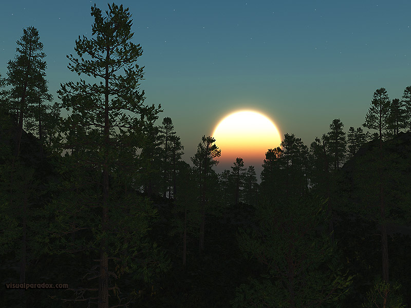 pine, sun, rise, set, trees, forest, woods, tree, scot, pines, stars, 3d, wallpaper