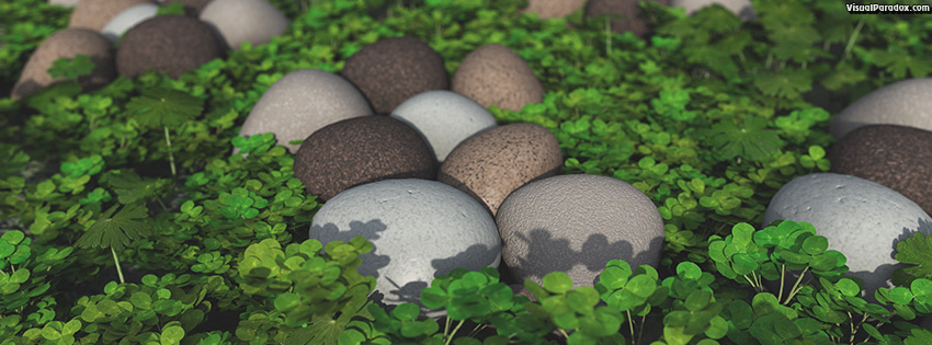 facebook, coverphoto, cover, art, background, beautiful, beauty, care, clover, concept, day, fresh, garden, grass, green, health, healthy, holiday, ireland, irish, leaf, life, luck, natural, nature, patrick's, patricks, plant, rock, saint, season, shamrock, spring, st., stone, stones, summer, white, 3d