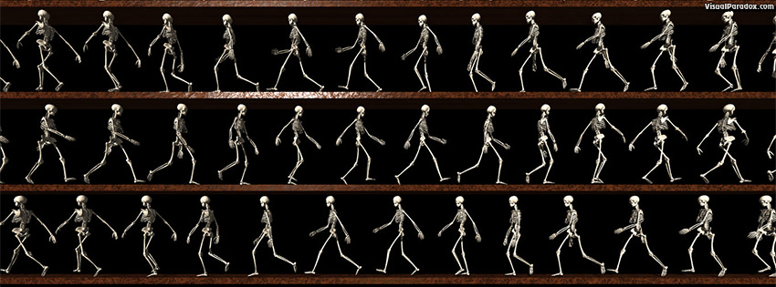 facebook, coverphoto, cover, skeletons, animation, line, bones, death, follow, stroll, lines, walking, 3d