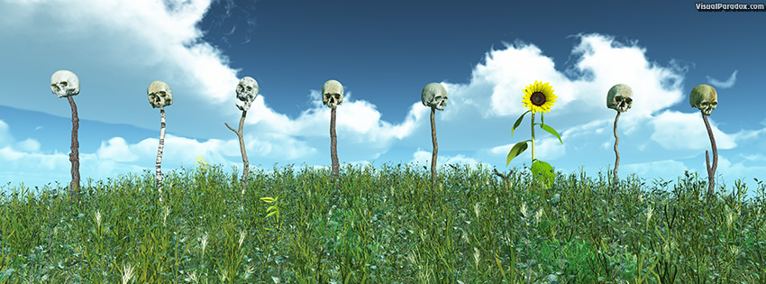 facebook, coverphoto, cover, background, beauty, beware, bloom, blooming, blossom, blue, bone, bones, botanical, botany, bright, caution, circle, cloud, color, colorful, dark, eyes, face, fence, field, flora, floral, flower, fright, frightening, garden, gardening, grave, graveyard, green, heads, headstone, hill, leaf, marker, natural, nature, organic, petal, pike, plant, plants, poles, pretty, round, row, scary, skeleton, skulls, sky, spooky, summer, sun, sunflower, sunny, teeth, texture, warning, weeds, white, yellow, 3d