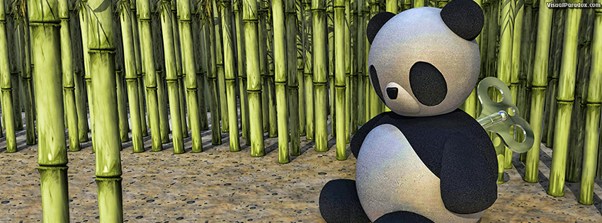 facebook, coverphoto, cover, panda, clockwork, wind-up, key, china, winding, toy, doll, bamboo, cane, bear, wound, down, 3d